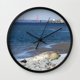 Baby Harbour Seal Sunning Itself Wall Clock