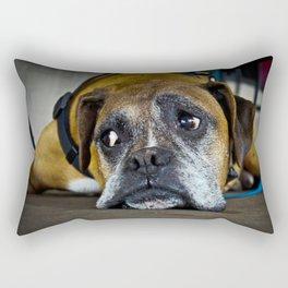 curious doggy Rectangular Pillow