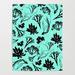 Seaweed Mint Green Pattern Poster
