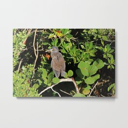 Sometimes He's Better as a Memory Metal Print