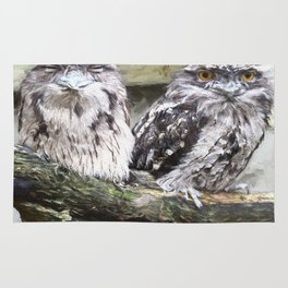 Two Tawny Frogmouths Rug