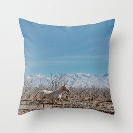 white horse Bolivia Throw Pillow