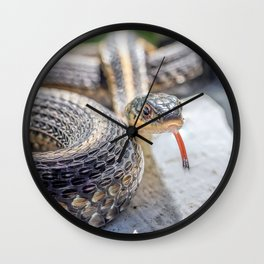 Garter snake with its tongue out Wall Clock