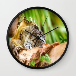 Chameleons master of disguise Wall Clock