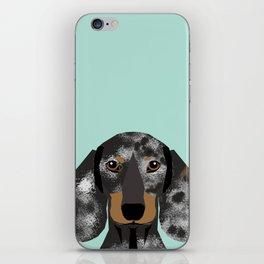 Doxie Dachshund merle dapple dog cute must have dog accessories dog gifts cute doxies dachshunds des iPhone Skin