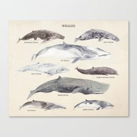 whales Canvas Prints featuring Whales by BySamantha | Samantha Ranlet
