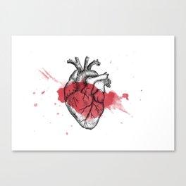 Anatomical heart - Art is Heart  Canvas Print