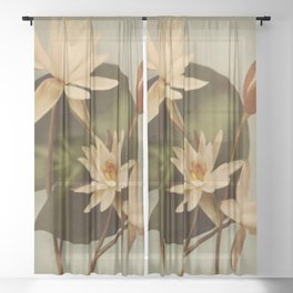 Vintage Water Lily Sheer Curtain