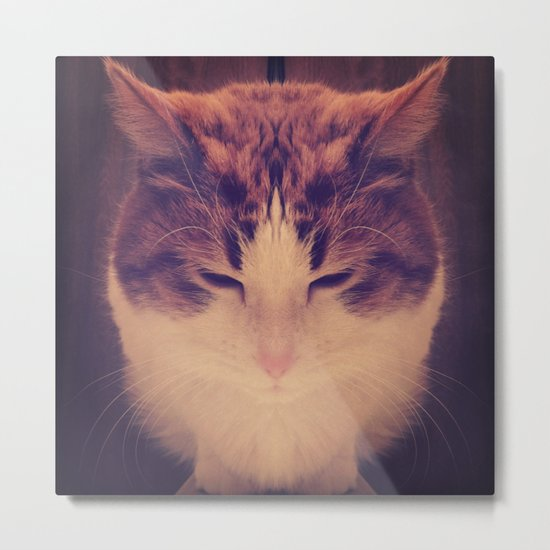 Symmetrical Feline Metal Print
