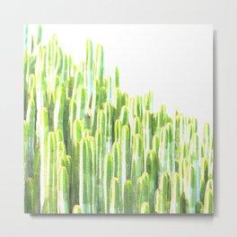 Cactus summer watercolor Metal Print