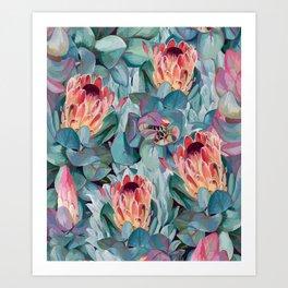 Protea flowers Art Print