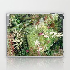 Ithilien Laptop & iPad Skin