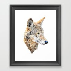 Wolf Head 2 Framed Art Print