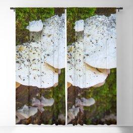 White Fungi Blackout Curtain