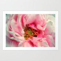 The Inside of Rose Art Print