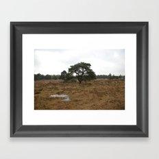 Mighty Trees Framed Art Print