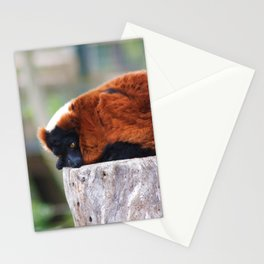 Just Sleeping Away Stationery Cards