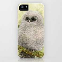 Northern Spotted Owls iPhone Case
