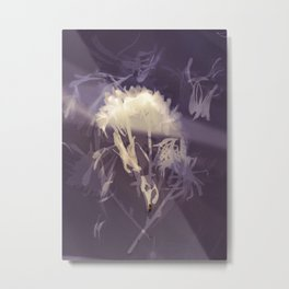Lumen S2 VE1 Metal Print