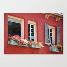 Window Boxes Canvas Print