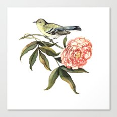 Watercolor illustration with bird and flower Canvas Print
