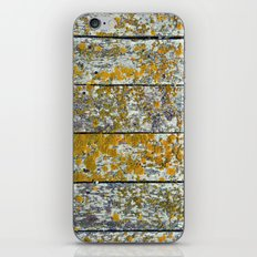 Lichen Covered iPhone & iPod Skin