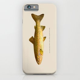 The Steelhead Trout iPhone Case