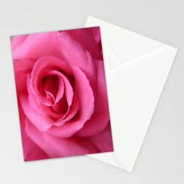Gorgeous Pink Rose Stationery Cards