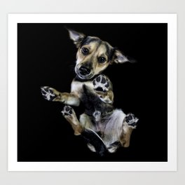 Puppy - Underdog Projectt Art Print