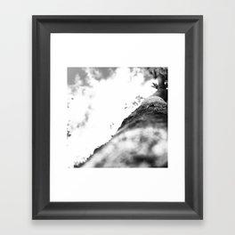 Eyes Aloft I Framed Art Print