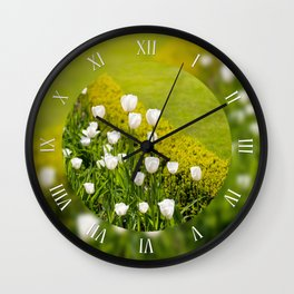 White tulips grow in buxus Wall Clock