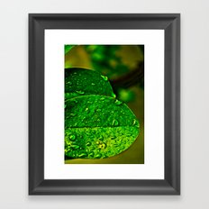 Greener Framed Art Print