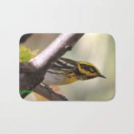 A Townsend's Warbler in a sycamore tree. Bath Mat