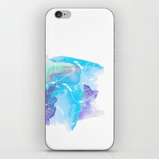 Swans iPhone & iPod Skin