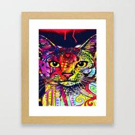 Cat Art - Animal cat - Pet Art Framed Art Print