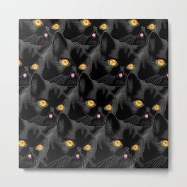 Blackberry of Genius Catt Metal Print