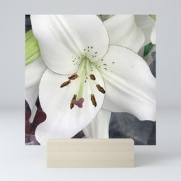 White Lily Mini Art Print