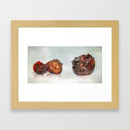 Physalis Part VIIII. Framed Art Print