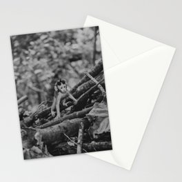 Baby monkey in forst in Bali, Indonesia | Animals photography on vacation in Ubud | Fine art print Stationery Cards