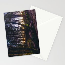 Wooded Tofino Stationery Cards