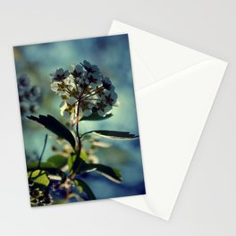 A change of pace Stationery Cards