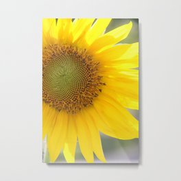 Bright and Sunshiny Day Metal Print
