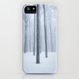 Foggy frozen winter forest iPhone Case