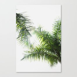 Summer Palm Trees - Modern Minimalist Canvas Print