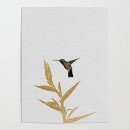 Hummingbird & Flower II Poster