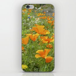 california poppy VIII iPhone Skin