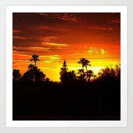 Treeline Sunset, Fiery Sky. Art Print
