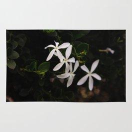 white plumeria Rug