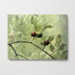 Guaven Metal Print