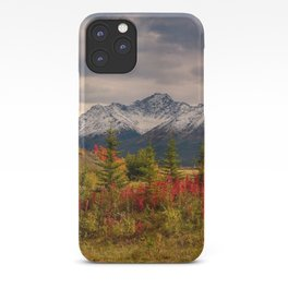 Seasons Turning iPhone Case